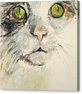 Chandi Big Face Canvas Print