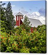 Chapel At The Antique Rose Emporium Canvas Print
