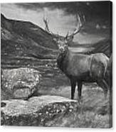 Charcoal Drawing Image Red Deer Stag In Moody Dramatic Mountain Sunset Landscape Canvas Print