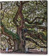 Charleston Angel  Canvas Print