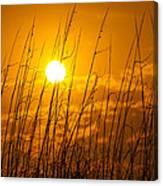 Charleston Beach Sunrise Canvas Print