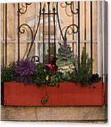 Charleston Window Garden Canvas Print