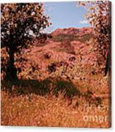 Charons Garden Wilderness Canvas Print