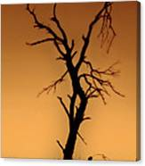 Charred Silhouette Canvas Print
