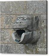 Chartres Cathedral Gargoyle Drain Canvas Print