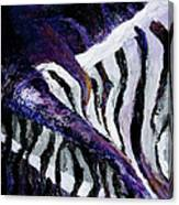 Chasmatic I Canvas Print