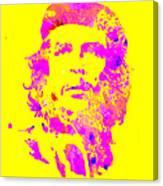 Che Guevara 2a Canvas Print