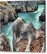 Cheakamus River Channel Canvas Print