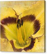 Cheerfully Yours Canvas Print