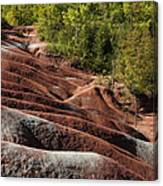 Mars On Earth - Cheltenham Badlands Ontario Canada Canvas Print