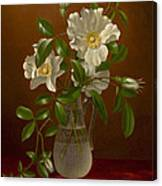 Cherokee Roses In A Glass Vase C1883-1888 Canvas Print