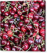 Cherries In Des Moines Washington Canvas Print