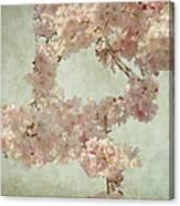 Cherry Blossom Bridal Bouquet Canvas Print