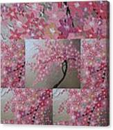 Cherry Blossom Collage Canvas Print