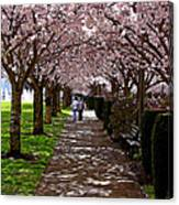 Cherry Blossom Friends Canvas Print