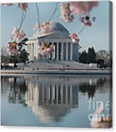 Cherry Blossoms And Jefferson Memorial Canvas Print