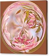 Cherry Blossom Orb Canvas Print