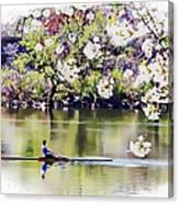 Cherry Blossom Rower Canvas Print