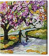 Cherry Blossom Tree Walk In The Park Canvas Print