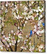 Cherry Blossoms And Blue Birds Canvas Print