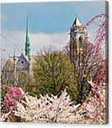 Cherry Blossoms And The Sacred Heart Canvas Print