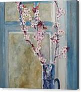 Cherry Blossoms In A Blue Pitcher Canvas Print