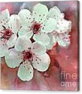 Apple Blossoms In Soft Pink - Digital Paint Canvas Print
