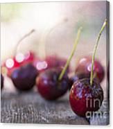Cherry Delites Canvas Print