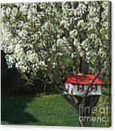 Cherry Home Canvas Print