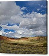 Cherry Springs Area 1 Canvas Print