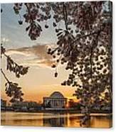 Cherry Sunrise Burst Canvas Print