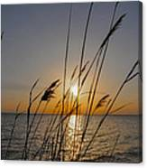 Chesapeak Bay At Sunrise Canvas Print