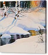 Chester Creek Shadows Canvas Print