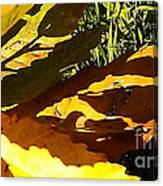Chestnut Abstract Canvas Print