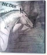 Chetak Canvas Print