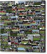 Chicago Bears Training Camp 2014 Collage The Players Canvas Print