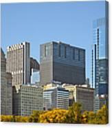 Chicago Skyline From Millenium Park II Canvas Print