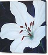 Chicago Snow White Lusterlily Canvas Print