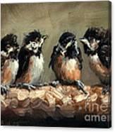 Chickadee Chicks Canvas Print