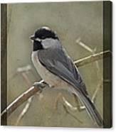 Chickadee Early Bird II Canvas Print