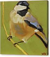 Chickadee I Canvas Print