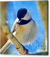Chickadee On A Bright Day -digital Paint I Canvas Print