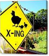 Chicken Crossing Canvas Print