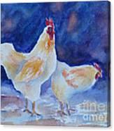Chicken Duo Canvas Print