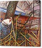 Chicken On Fence  Zinc Arkansas Canvas Print