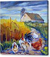 Chickens In The Cornfield Canvas Print