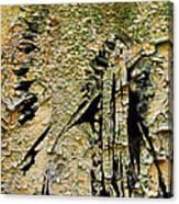 Chief Sitting Bull History Canvas Print