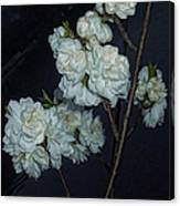 Chinese Flowers Canvas Print