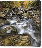 Chippewa Creek In Fall Canvas Print
