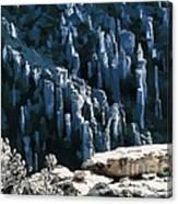 Chiricahua Pinnacles D Canvas Print